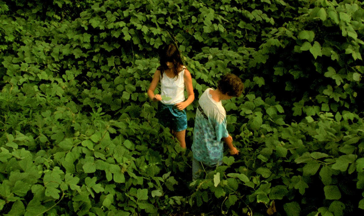 Two kids standing in a green field